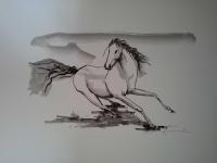 cavalos-4