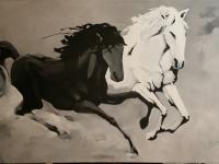 2 Cavalos (Branco e Negro)